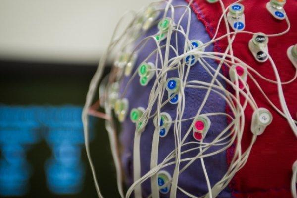 استعدادیابی افراد از طریق نقشه مغزی